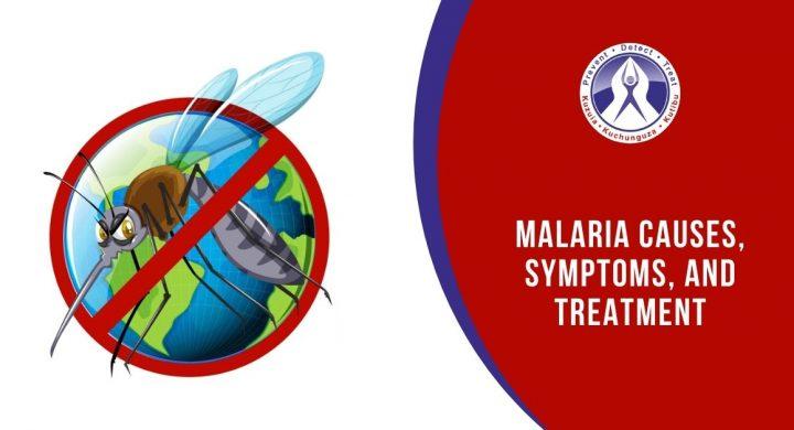 Malaria Causes, Symptoms, and Treatment